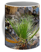 Fan Palm Leaf Over Andreas Creek In Indian Canyons-ca Coffee Mug