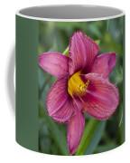Fancy Red Wine Daylily Coffee Mug