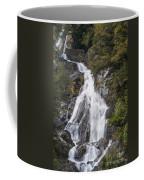 Fantail Waterfalls Coffee Mug