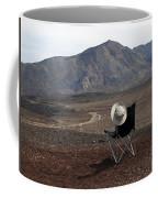 Far As My Eyes Can See Coffee Mug