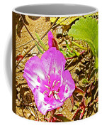 Farewell To Spring At Point Reyes National Seashore-california Coffee Mug