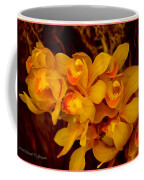 Fascinating Beauty Coffee Mug