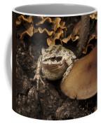 Fat Frog Coffee Mug by Jean Noren