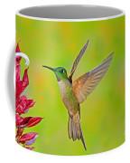 Fawn-breasted Brilliant Hummingbird Coffee Mug