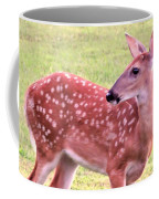 Fawn In The Waning Summer Coffee Mug
