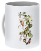 Feasting And Fun Among The Fuschias Coffee Mug