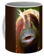 Feather Blenny - A Fish  Coffee Mug