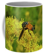 Feather-legged Fly On Goldenrod - Trichopoda Coffee Mug