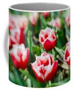 Feather Red Coffee Mug