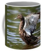 Feather Spread - Female Mallard Coffee Mug
