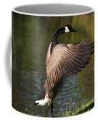 Feather Wash Coffee Mug