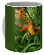 Feathery Orange Crocosmia Coffee Mug