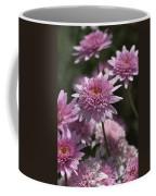 Federation Daisies Coffee Mug