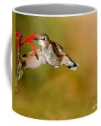 Feeding Anna's Hummingbird Coffee Mug