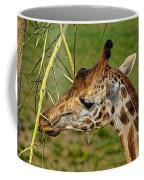 Feeding Giraffe Coffee Mug