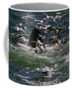 Feeding Humpback Whale Coffee Mug