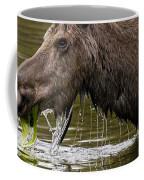 Feeding Moose Coffee Mug