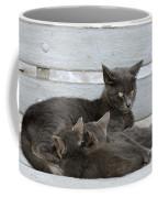 Feeding The Kittens Coffee Mug