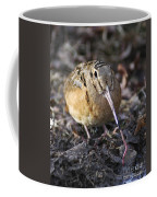 Feeding Woodcock Coffee Mug
