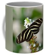 Feeding Zebra Butterfly Coffee Mug