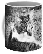 Feline Pose Coffee Mug