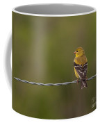 Female American Goldfinch Coffee Mug