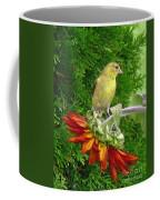 Female American Goldfinch Coffee Mug