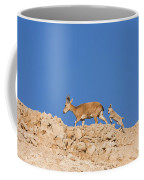 female and young Nubian Ibex Coffee Mug