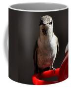 Female Anna Hummingbird Coffee Mug