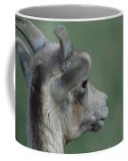 Female Bighorn Coffee Mug
