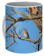Female Bluebird Coffee Mug