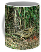 Female Bobolink At Nest Coffee Mug