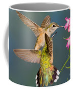 Female Broad-tailed Hummingbird Coffee Mug