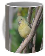 Female Bunting  Coffee Mug