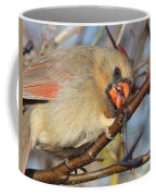 Thorns And Berries - Cardinal Coffee Mug