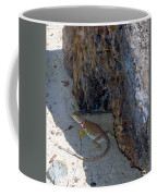 Female Collared Lizard Coffee Mug