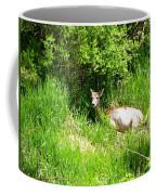 Female Deer Resting Coffee Mug