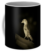 Female House Finch Coffee Mug