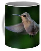 Female Hummingbird Anna's In Flight Coffee Mug