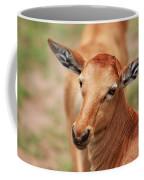 Female Impala Coffee Mug
