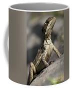 Female Jesus Lizard Coffee Mug