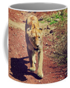 Female Lion Walking. Ngorongoro In Tanzania Coffee Mug