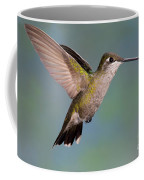 Female Magnificent Hummingbird At Flower Coffee Mug