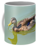 Female Mallard Duck  Coffee Mug