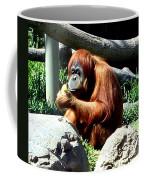 Female Orangutan-san Diego Coffee Mug