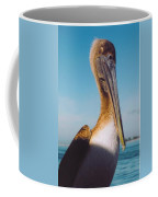 Female Pelican Coffee Mug