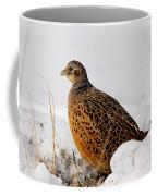 Female Pheasant Coffee Mug