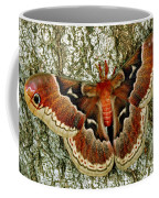 Female Promethea Moth Coffee Mug