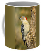 Female Red-bellied Woodpecker Coffee Mug