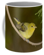 Female Scarlet Tanager Coffee Mug